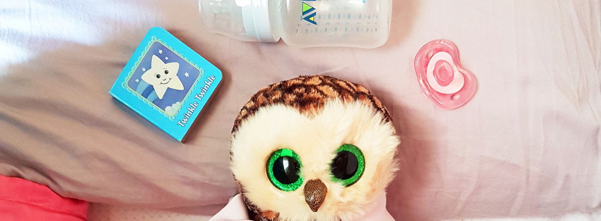 Owl surrounded by little book, feeding bottle and pacifier